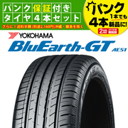 BluEarth-GT